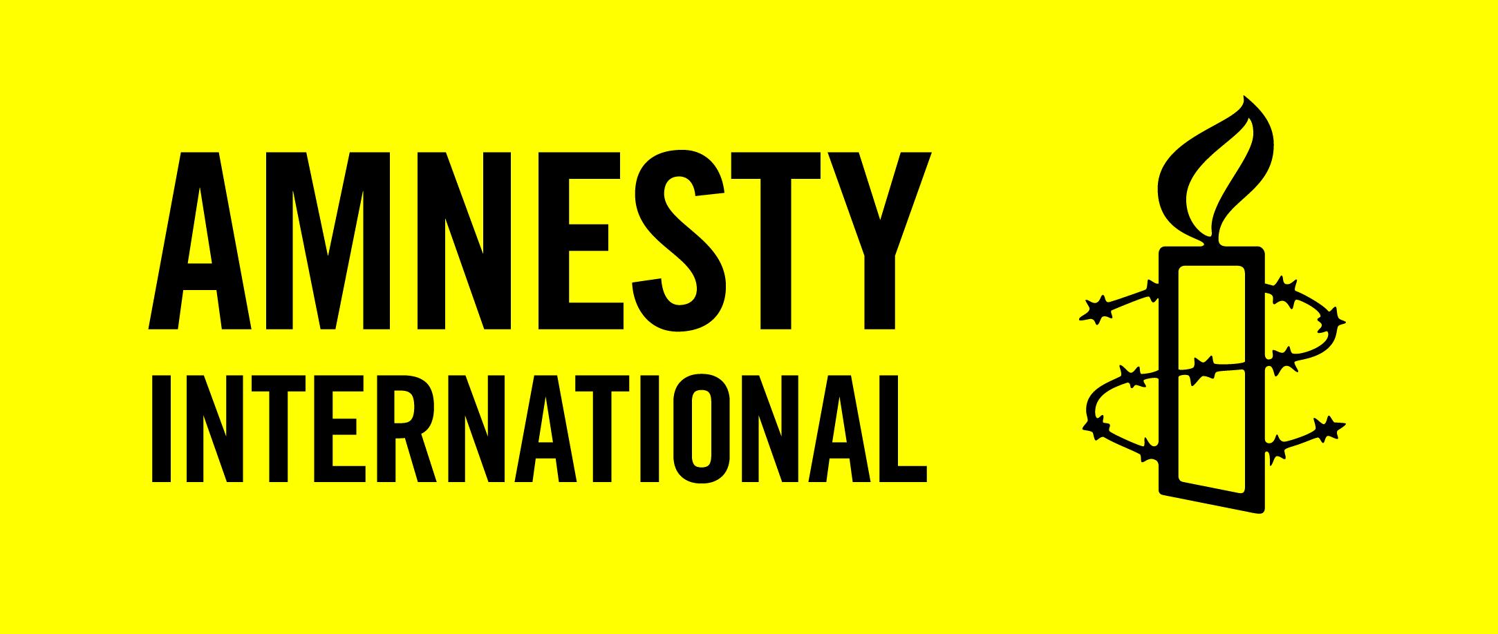 BUNDESFREIWILLIGE_N BEREICH FINANZEN (m/w/x) in Vollzeit (38 Std./Woche) - Amnesty International Deutschland e.V. - Logo